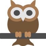 owl-512